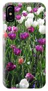 Tulips - Field With Love 60 IPhone Case