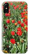 Tulips - Field With Love 62 IPhone Case