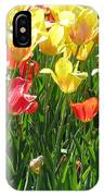 Tulips - Field With Love 65 IPhone Case