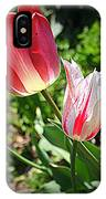 Tulips In Red And White IPhone Case