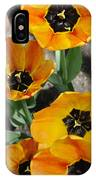 Tulips Tp IPhone Case