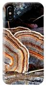 Turkey Tail Fungi In Autumn IPhone Case