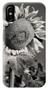 Turkish Sunflower 3 IPhone Case