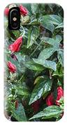 Turks Cap And Rain Drops IPhone Case