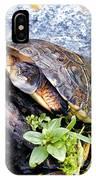 Turtle 1 IPhone Case