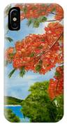 Turtle Bay Virgen Islands IPhone Case