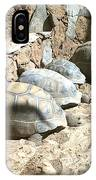 Turtle Desert IPhone Case