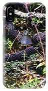 Turtle In The Glades IPhone Case