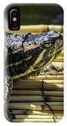 Tutle On Raft IPhone Case