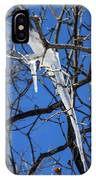 Twigs And Ice IPhone Case