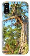 Twirling Tree Path IPhone Case