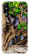 Twisted Trunks IPhone Case