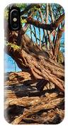 Twisting Trees IPhone Case