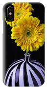 Two Daises In Striped Vase IPhone Case