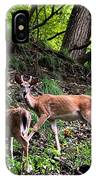 Two Deer IPhone Case