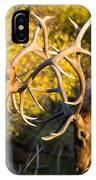 Two Elk Bulls Sparring IPhone Case