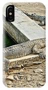Two Gharial Crocodiles In Gharial Conservation Breeding Center In Chitwan Np-nepal   IPhone Case