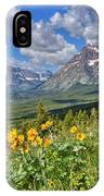 Two Medicine Valley IPhone Case