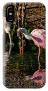Two Pink Spoonbills IPhone Case