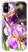 Two Purple Irises IPhone Case