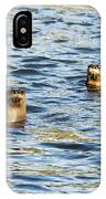 Two River Otters IPhone Case