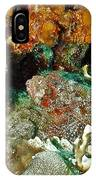 Two Scorpionfish IPhone Case