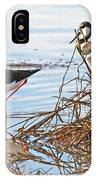Two Stilts At The Pond IPhone Case