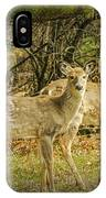 Two White Tailed Deer IPhone Case