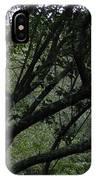 Tyler Tree 2 IPhone Case