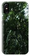 Under The Bamboo Haleakala National Park  IPhone Case