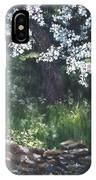 Under The Shade Of The Almond Blossom IPhone Case