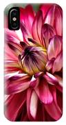 Burgundy Dahlia II IPhone Case