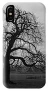 Winters Gloom IPhone Case