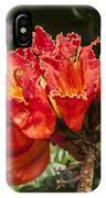 Unusual Tulips IPhone Case