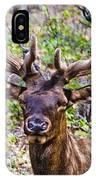 Up Close And Personal With An Elk IPhone Case