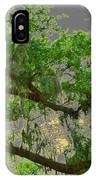 Up Through The Haunted Tree IPhone Case