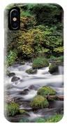 Upper Willamette River IPhone Case