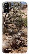 Utah Tree IPhone Case