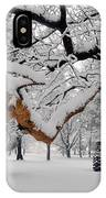 Valley Forge Winter 9817 IPhone Case