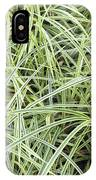 Variegated Monkey Grass Background IPhone Case