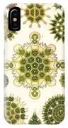 Varities Of Pediastrum From Kunstformen Der Natur IPhone Case