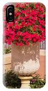 Vase Of Petunias IPhone Case