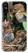 Veery At Nest IPhone Case