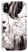 Veiled Falls IPhone Case by Brad Brizek