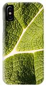 Veins Of A Leaf IPhone Case