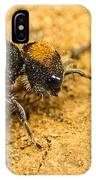 Velvet Ant IPhone Case