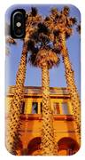 Venice Plams At Sunset IPhone Case