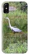Very Hungry Blue Heron IPhone Case