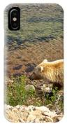 Very Light-colored Grizzly Bear In Moraine River In Katmai Nnp-ak IPhone Case