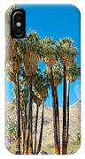 Very Tall Fan Palms In Andreas Canyon In Indian Canyons-ca IPhone Case